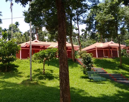 best budget resorts in wayanad