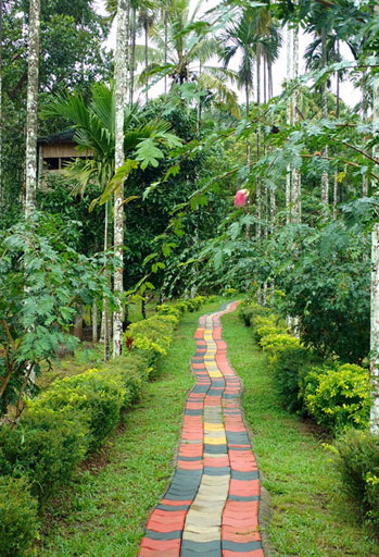 best resorts in wayanad for family